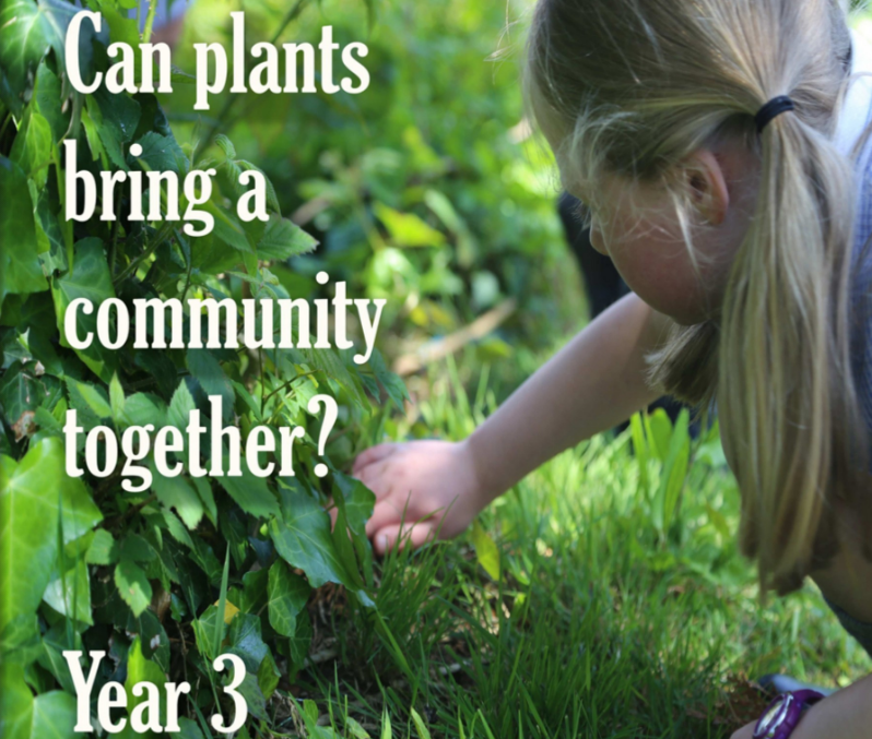 Can plants bring a community together front page